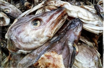 Dried Fishheads